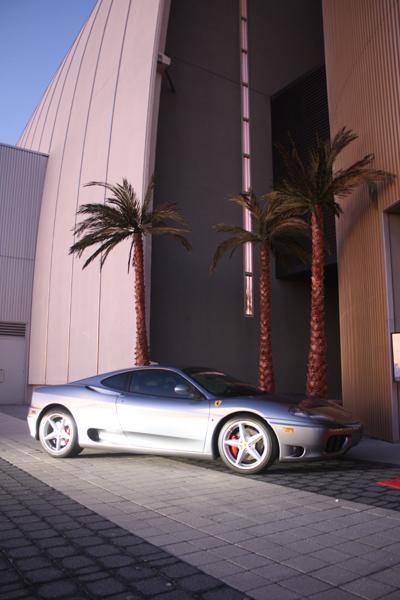 Ferrari-Palm-Trees