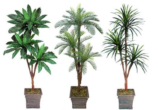6' Silk Trees