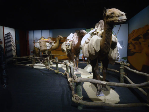 Cosi Silk Road Exhibit