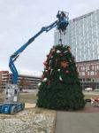 apex event production ohio tree installation