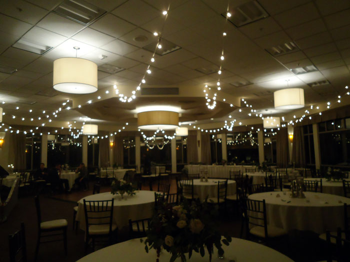 Beautiful wedding bistro lights apex event pro rent bistro lights and wedding decorations for your wedding reception party or event in columbus junglespirit Gallery